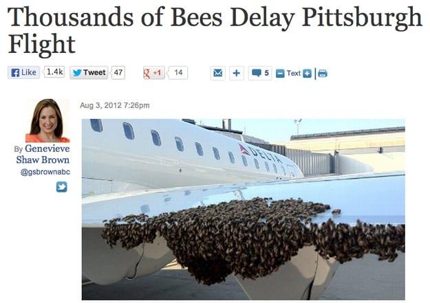 le-api